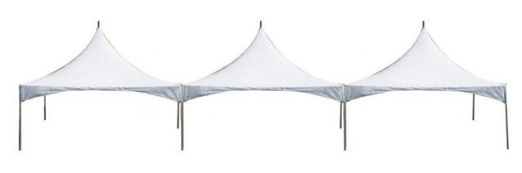 Marquee Canopy Tent 20x60